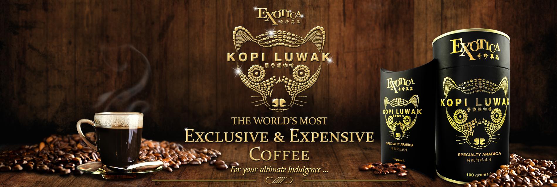 Exotica Kopi Luwak Banner